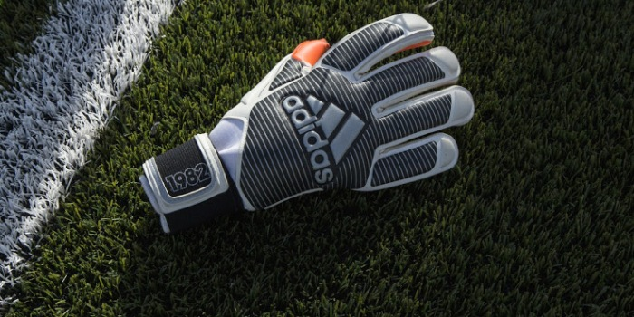 Adidas Goalkeeper Glove
